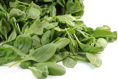 'baby spinach': Baby Spinach on white background