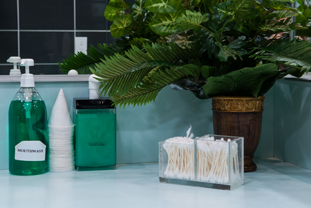 sterilize: Hand soap and mouthwash on bathroom shelf
