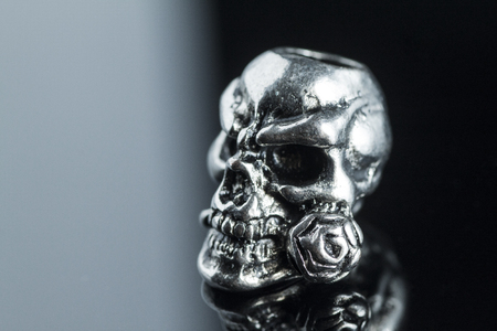 cranium: metal skull on a black and white background a rose in his teeth Stock Photo