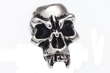 metal skull on a white background Stock Photo