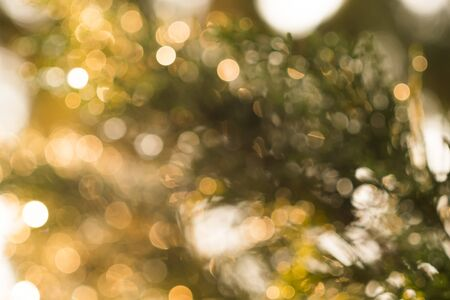Bokeh is warm light from natural light. The picture is then soft, giving a warm feeling.