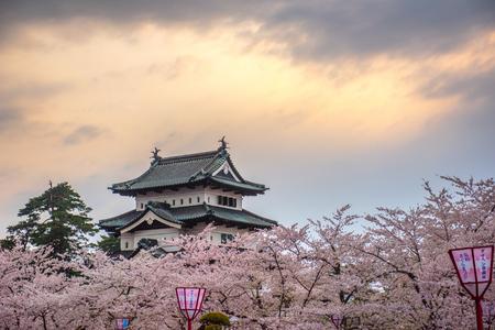 Cherry blossoms at the Hirosaki Castle Park in Hirosaki, Aomori, Japan Editorial