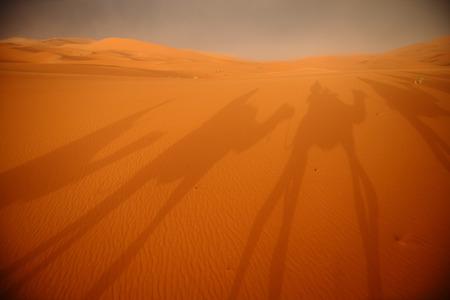 Marrakech,Morocco.Africa サハラ砂漠の砂丘を通って行くラクダのキャラバンの影 写真素材