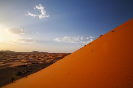 Marrakech,Morocco.Africa サハラ砂漠の砂丘を通って行くキャンプのラクダ キャラバン