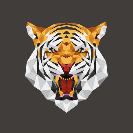 tigre caricatura: Tiger geométrica poligonal cabeza, ilustración vectorial Vectores