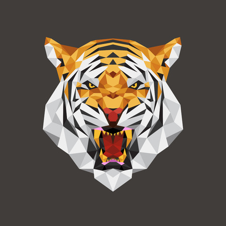 tiger isolated: Tiger head polygon geometric, Vector illustration