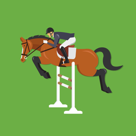 equestrian sport: Horse Jumping Over Fence Equestrian sport