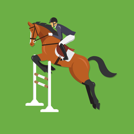 thoroughbred horse: Horse Jumping Over Fence Equestrian sport