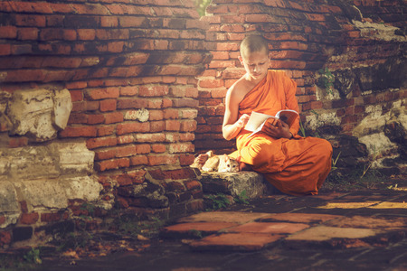Young Buddhist novice monk reading and study outside with a cat lying on the side Stok Fotoğraf