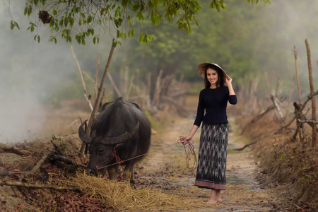 Asian woman wearing rural Thai dress with her buffalo