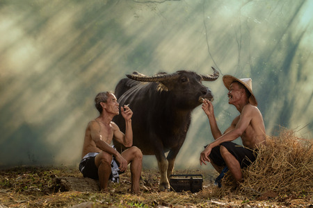 Two old farmers are laughing with happiness Stok Fotoğraf