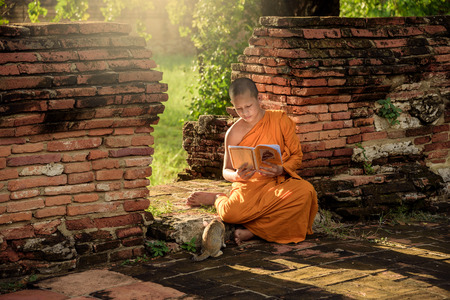 Young Buddhist novice monk reading and study outside with a cat lying on the side Imagens