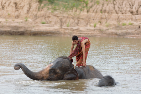 Big elephant and baby bathing in the river with yong man riding on its back