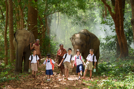 students go back home after learning by walking with friend, father and their elephant