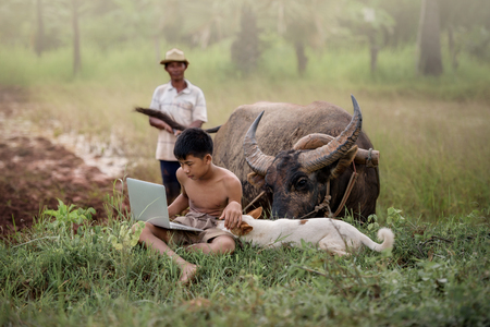 Young farmer playing  laptop with a dog  in farm field and buffalo behind