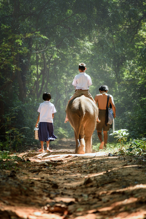 brother sister and their father go back home after learning by walking with their elephant