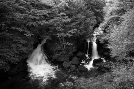 Ryuzu Fall flow through forest in Autumn season of Japan; Monotone by black and white
