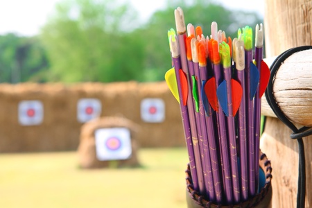 archery target: Arrows and target archery in field