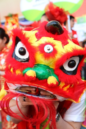 Lion dance for celebration chinese new year  photo