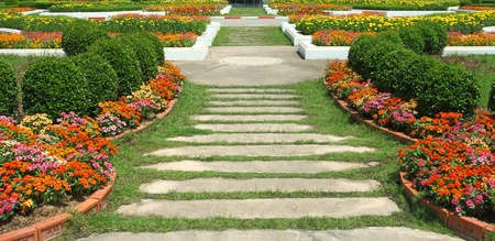 nature path through in the garden photo
