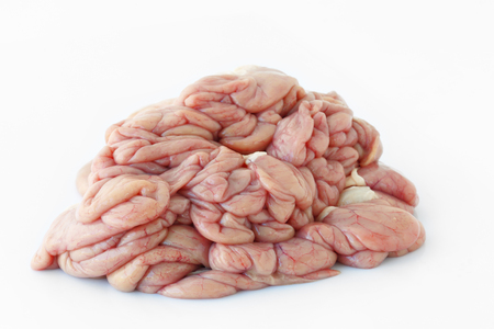 chitterlings: Chitterlings internal organs of pig isolated on white background.
