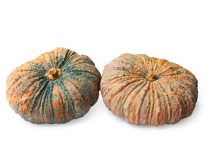 Group of pumpkin isolated on white background Stock Photo