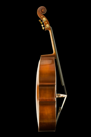 Side view of vintage viola isolated on black background