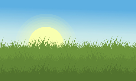 Landscape of grass at the morning vector art Illustration