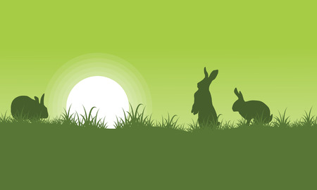 Schattenbild des Kaninchens auf grünen Hintergründen