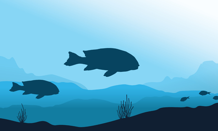 silhouette of fish underwater landscape vector flat royalty free