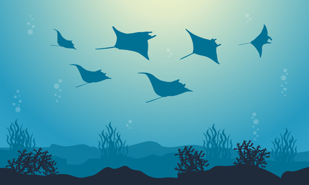 Vector illustration of stingray beauty sea landscape