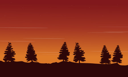 lake sunset: Silhouette of tree lined scenery