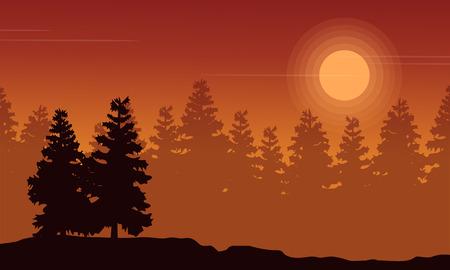 lake sunset: Silhouette of spruce forest at sunset scenery