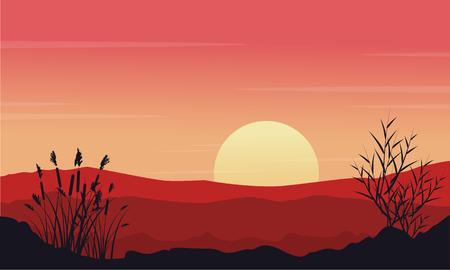 coarse: Silhouette of desert at morning landscape