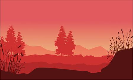 coarse: Silhouette of desert with spruce landscape Illustration