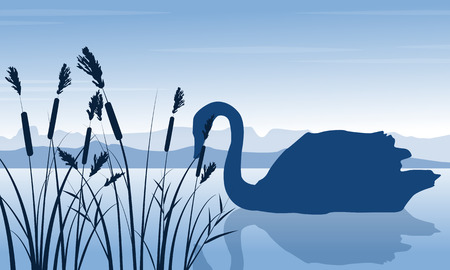 Silhouette of swan and grass scenery