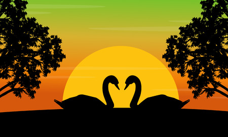 lake sunset: Silhouette of swan on the hill scenery