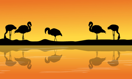 At riverbank with silhouette flamingo scenery Illustration