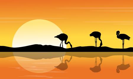 Riverbank scene with silhouette flamingo at sunset illustration. Illustration