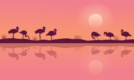 Flamingo on riverbank scene silhouette collection