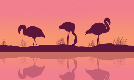 Riverbank landscape with flamingo silhouettes Illustration