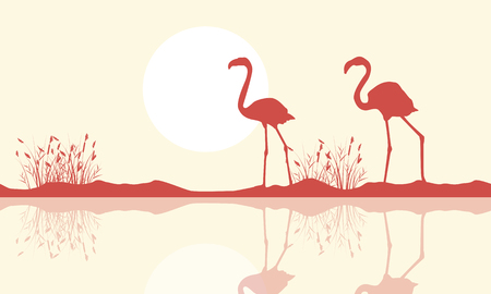 Flamingo on riverbank scene silhouette Illustration