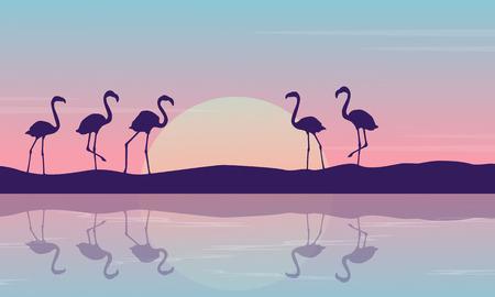 At sunrise flamingo on the riverbank landscape Illustration