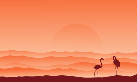 lake sunset: Desert background with flamingo silhouette scenery
