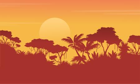Silhouette jungle at sunrise scenery