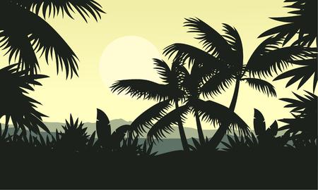 evaporation: Palm tree silhouette on jungle scenery Illustration