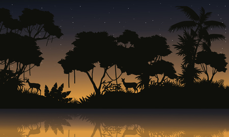 evaporation: Beauty scenery with jungle silhouettes