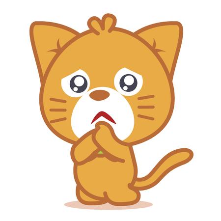 Sad cat pets of character