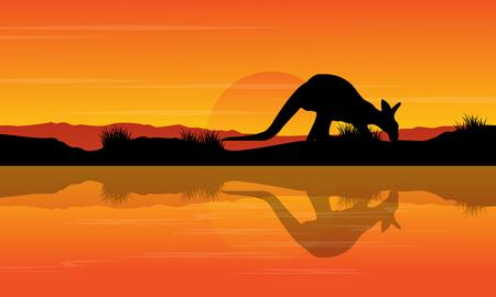Silhouette kangaroo on the river landscape