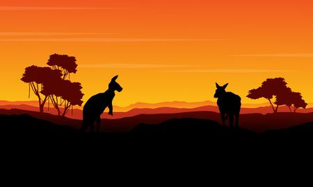 Landscape kangaroo silhouette at the sunset Illustration